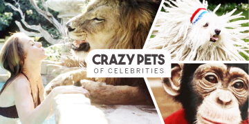 Crazy Pets of Famous Celebrities