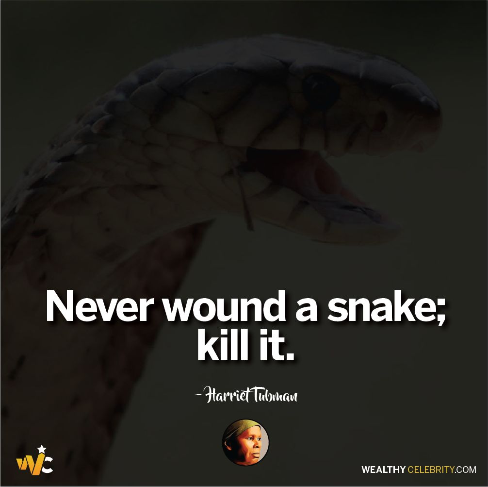 Harriet Tubman quotes about slavery and freedom - never wound a snake - kill it