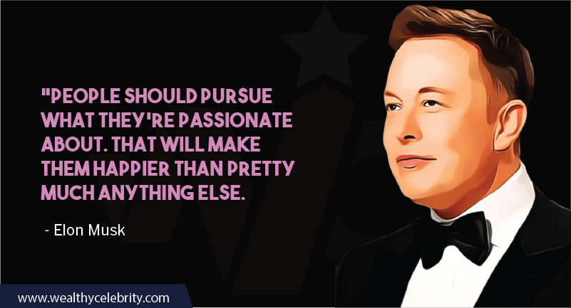 Elon Musk Motivational Quotes about following passion