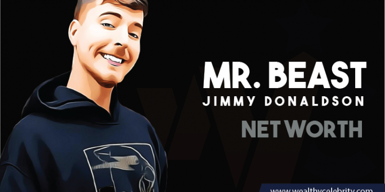 Mr Beast - Net Worth